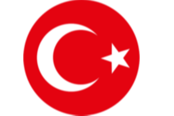 Еуро-2020 қарсаңында: Түркия құрамасына шолу